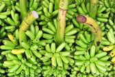 Green banana on floor in market, thailand — Stock Photo