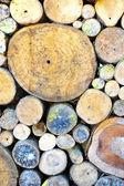 木材の木製の壁 — ストック写真