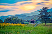 Landscape with small house and Mountain. chaingrai, thailand.  — Stock Photo