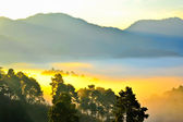 Sea of mist. View from high mountain. Doi angkhang mountain, chi — Stock Photo