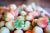 Strawberries in a basket on the garden farm — Stock Photo