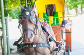 Artificial Horse carriages for tourist in Lampang Thailand  — Foto de Stock