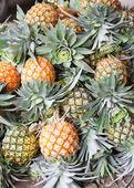Pile of pineapple — Stock Photo