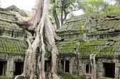 Weathered Temple — Zdjęcie stockowe