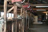 Shearing Shed 0602 — Stock Photo