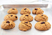 Oatmeal raisin cookies. — Stock Photo