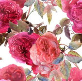 Pink Roses Pattern — Stock Photo