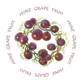 Grape Label — Stock Photo
