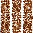 Stock Photo: Animals Seamless Pattern