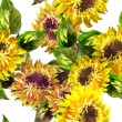 Sunflowers — Stock Photo #41116477