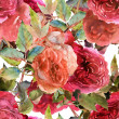 Roses pattern — Stock Photo #42562483
