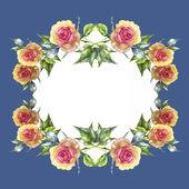 Cadre de roses — Photo