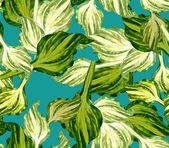 Host green leaves seamless pattern — Stock Photo
