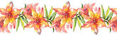 Beautiful Lily Flowers Garland — Stock Photo