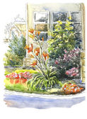Lilies flowers blooming in the garden — Zdjęcie stockowe