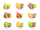 Leaves icons — Stock Vector