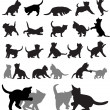 Kitten silhouettes — Stock Vector