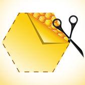 Concepto de la miel — Vector de stock