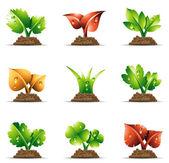 Plantas — Vetorial Stock
