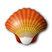 Seashell — Stock Vector