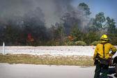 Wild Land Fire — Stock Photo