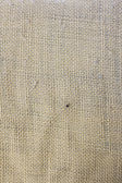 Cloth texture — Stock Photo
