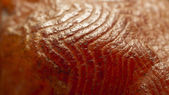 Red rock macro texture — Stock Photo