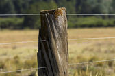 Wood and wire fence — Stock Photo