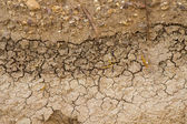 Dry clay ground cracked — Stock Photo