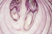Onion. — Stock Photo