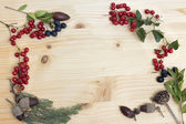 Autumn berries and acorns on wood — Stock Photo