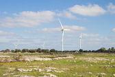Wind generators in countryside — Stock Photo