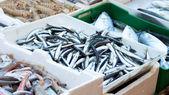 Fishmarket - alici — Stock Photo