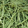 Stock Photo: Common Beans