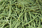 Common Beans — Stock Photo