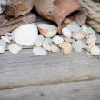Marine background - seashells, rope and amphora — Stock Photo #42872631