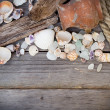 Marine background - seashells, rope and amphora — Stock Photo #42873511
