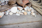 Marine background - seashells, rope and amphora — ストック写真