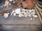 海洋背景-贝壳、 绳子和双耳瓶 — 图库照片