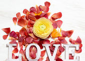 Ranunculus flowers and letters LOVE background — Photo