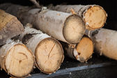 Firewood, fuel for the fire. — Stock Photo