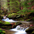 Mountain river in Autumn — Stock Photo #39065353