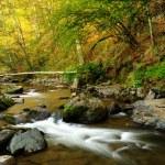 秋の山川 — ストック写真