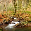 Mountain river in late Autumn — Stock Photo