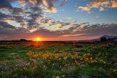 Autumn landscape, sunset — 图库照片