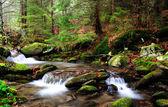 Mountain river in Autumn, morning shot. — Stock Photo