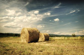Hay bales in a field just before a storm. Hay Bale farming. — Foto de Stock