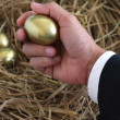Businessman holding golden egg from nest — Stock Photo #39414981