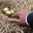 Businessman showing to golden egg from nest — Stock Photo #39415645