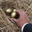 Businessman holding golden egg from nest — Stock Photo #39415749